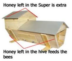 Top Bar Beehive Plans Free How To Check Combs In A Top Bar Hive Bee Keeping Pinterest