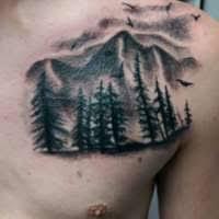 olio nick of technicolor tattoo studio branson mo tattoo artist