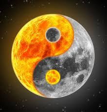 300 best yin yang images on yin and yang yin