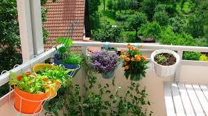 balkon katzensicher machen balkon katzensicher machen die wichtigsten tipps