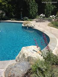 new house swimming pool design simply organized