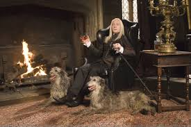 Malfoy Manor Floor Plan Decor Wishlist From Draco Malfoy Harry Potter Decormania Info