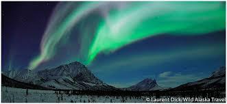 aurora borealis northern lights tours yukon aurora borealis viewing in northern alaska alaska365
