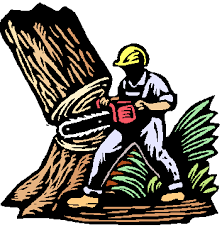 andy s tree service