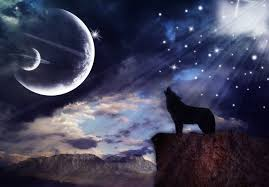 wolf howling at the moon by joaanadarc on deviantart