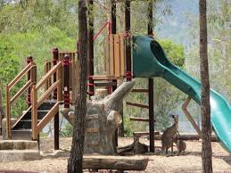 the playground is man made the kangaroos are real natural