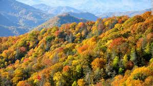fantastic fall foliage cnn travel