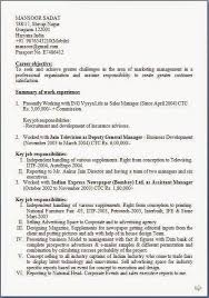 Resume Download Free Mba Marketing Resume Marketing Resume Summary Resume Samples With