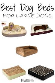 Dog Sofas For Large Dogs by Best Dog Beds For Large Dogs Dogvills