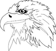 baby eagle coloring pages kids coloring pages pinterest