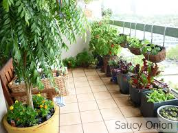 simple balcony garden small home decoration ideas fresh and