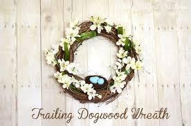 diy trailing dogwood wreath pottery barn knock sprinkle
