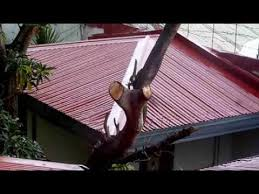 church roof paint spanish red 11 01 13 youtube