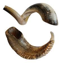 purchase shofar ram s shofar large s museum store at the skirball