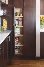 small kitchen pantry u2013 home design and decorating