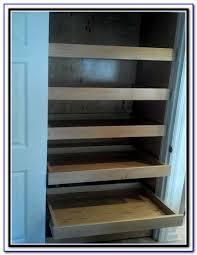 Kitchen Cabinet Sliding Organizers - sliding shelves for kitchen cabinets uk download page u2013 best home