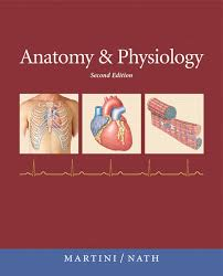 Best Anatomy And Physiology Textbook Martini Anatomy Physio Project For Awesome Anatomy And Physiology