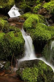 Map Oregon Washington State Stock by 149 Best Northwest Is Best Images On Pinterest Portland Oregon