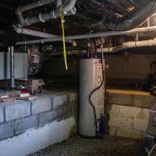 basement and crawl space cleanout and restoration catseye pest