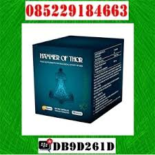 dijual obat kuat hammer of thor jogja 085229184663