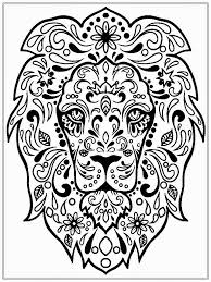 lion head coloring pages
