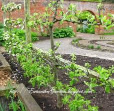 designer planning a vegetable garden layout ideas 14 astounding