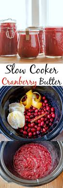 best 25 cranberry recipes ideas on cranberry cookies