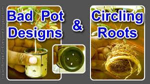 bad pot designs u0026 circling roots youtube
