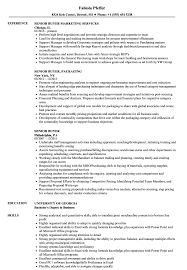 resume templates for a buyer buyer resume retail objective exles fashion pdf resumes sle