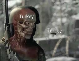 Turkey Memes - when you democratically remove democracy turkey vs turkey