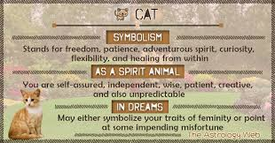 cat meaning and symbolism the astrology web
