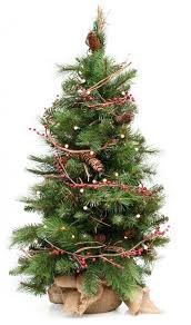 live christmas tree decorating with a live christmas tree barts tree service