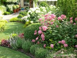 pink anabelle ogród mały ale pojemny strona 85 forum