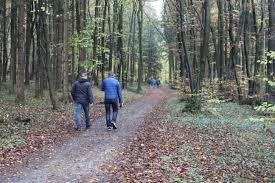 Wetter Bad Laer Silkeaschhoff Wandern Und Mehr Seite 2