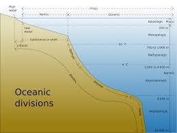 meteorology is a complete global flood physically possible on