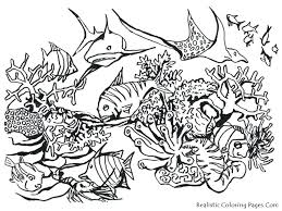 realistic jungle animals coloring pages coloring