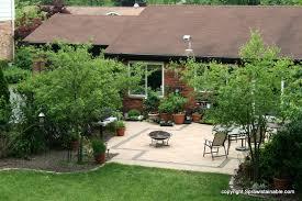 may 2011 garden photos sprawlstainable