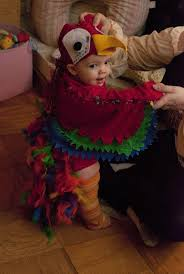 Ideas To Dress Up For Halloween Party by 16 Best Parrot Costumes Images On Pinterest Parrot Costume