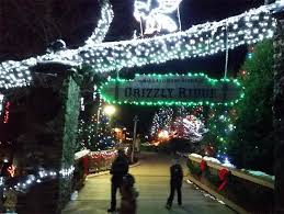 when do the zoo lights end christmas events at akron zoo start this weekend wild lights and