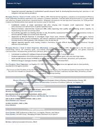 sample resume for ceo ceo executive director executive resume sample non profit