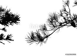pine tree silhouette vector illustration ai10 stock