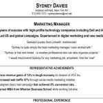 Executive Summary Resume Examples by Resume Example Executive Summary With Management Qualifications