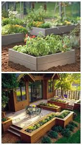 Diy Backyard Garden Ideas Diy Raised Garden 584x1024 Jpg