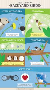 native plants for birds gardening for the birds fix com