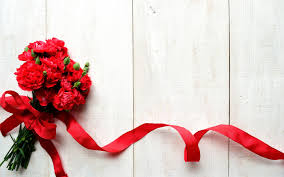 Red Carnations Red Carnations Flowers With Ribbon Wallpaper 1621 Wallpaper