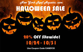 Halloween Sale Halloween Sale 20 Off Everything On Our Site Reef2reef