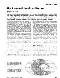 the permo triassic extinction