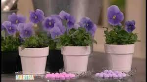 how to make centerpieces how to make pansy and viola centerpieces martha stewart