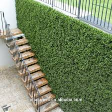 Fake Shrubs Artificial Green Wall Artificial Green Wall Suppliers And