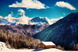 Mountain Cabin Decor Compare Prices On Mountains Cabins Online Shopping Buy Low Price